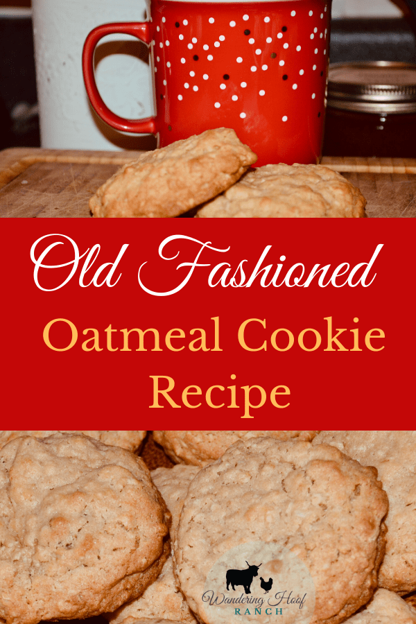 Old fashioned oatmeal cookies are a staple in our household pantry. These cookies are soft and chewy and super quick and easy to make. This oatmeal cookie recipe will soon become your go to cookie recipe.