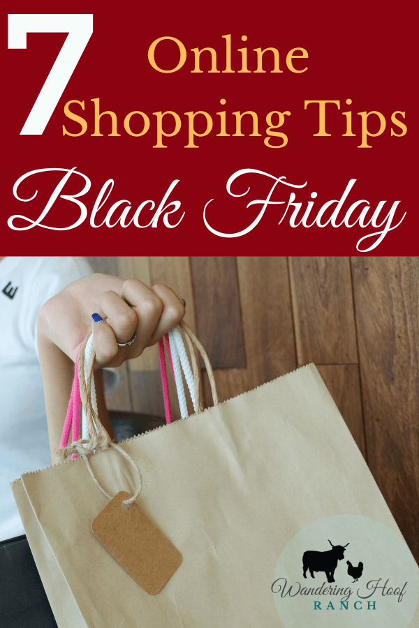 Finding the BEST deals online during Black Friday is a fun and exciting game! Save money on items that you need for the holiday season with these 7 online shopping tips to help you get the best Black Friday deal from your couch!