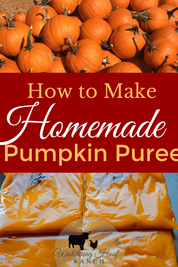 Learn how to make homemade pumpkin puree from a whole pumpkin to use for baking, soups and more with our pumpkin puree recipe.
