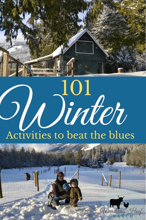 101 winter activities for the entire family, including children and toddlers. Stay busy, healthy and happy this winter season with our list of free fun frugal activities that beat the winter blues