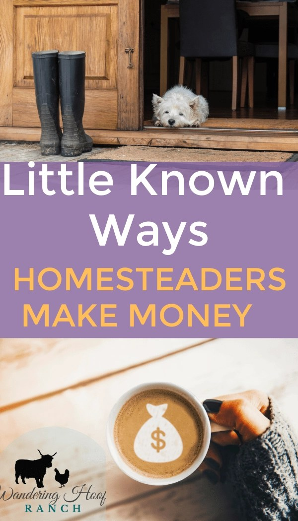 """47 """"tried and true"""" tested ways to make money on a homestead. Tips to get started homesteading for beginners spoken from experience and homestead experts."""