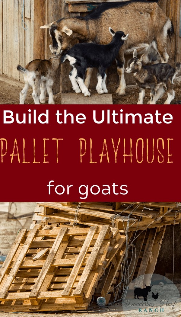 build the ultimate pallet playhouse for goats pin