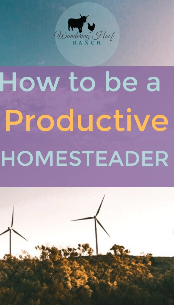 How to be a productive homesteader, 8 secrets for time management and productivity