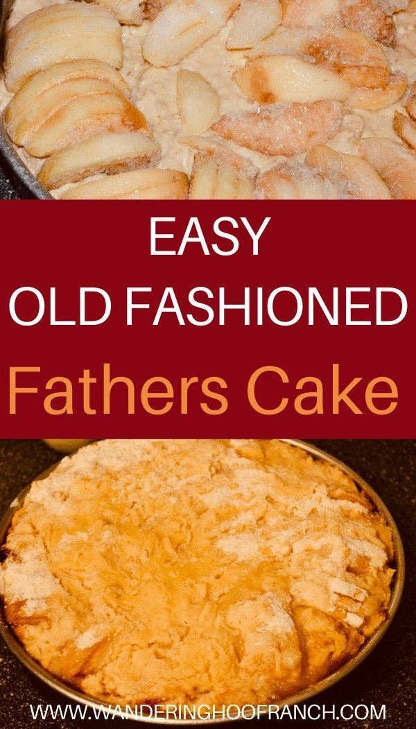 easy old fashioned fathers cake apple cake recipe pin