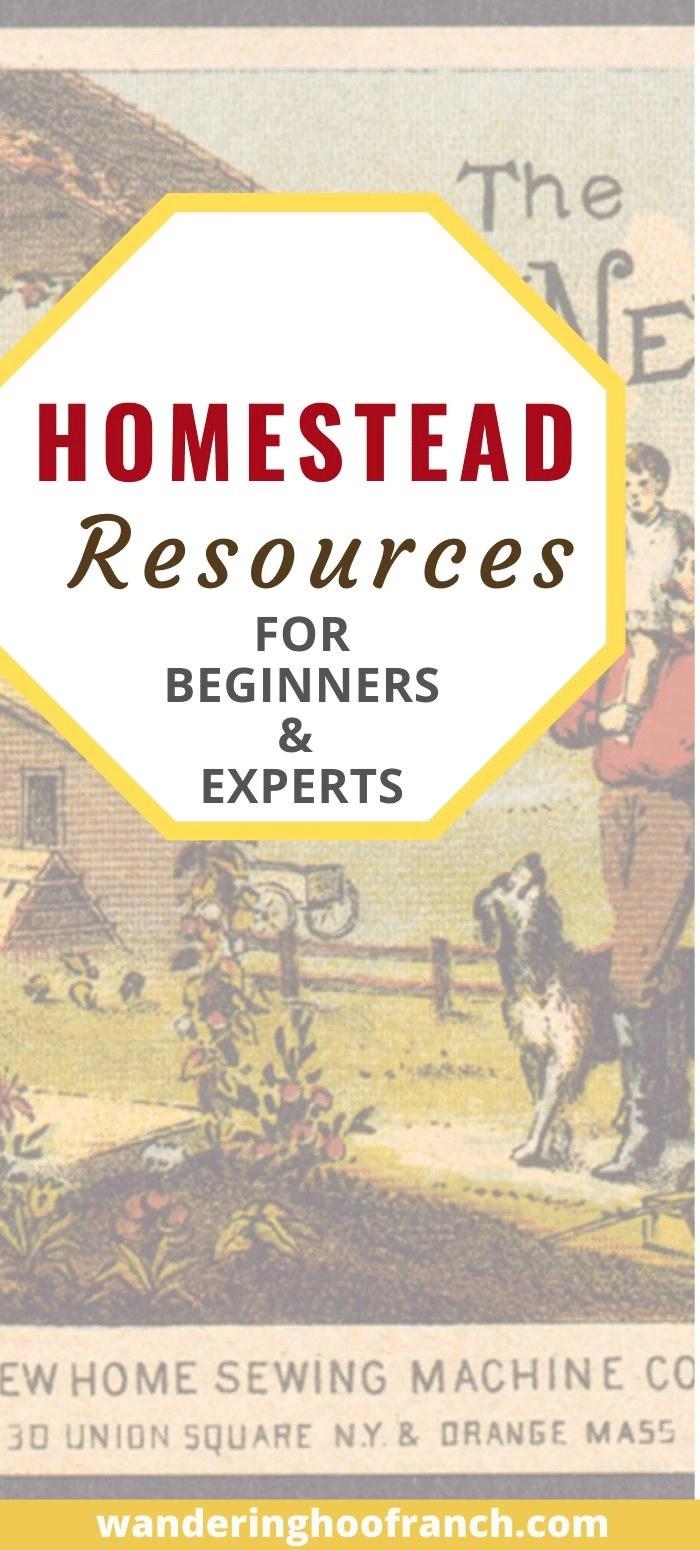 Homestead Resources