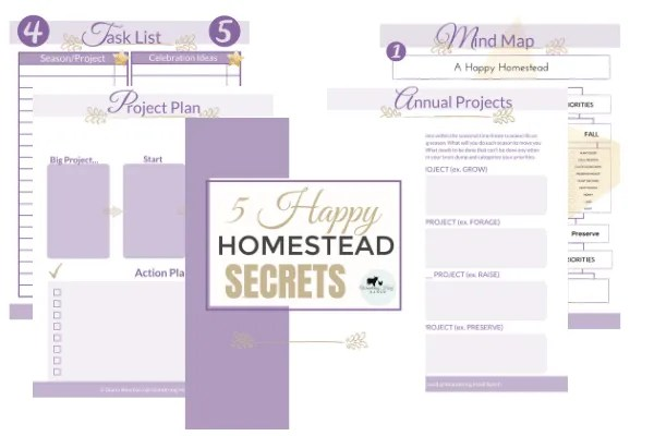homesteading for beginners tips planning workbook mock up