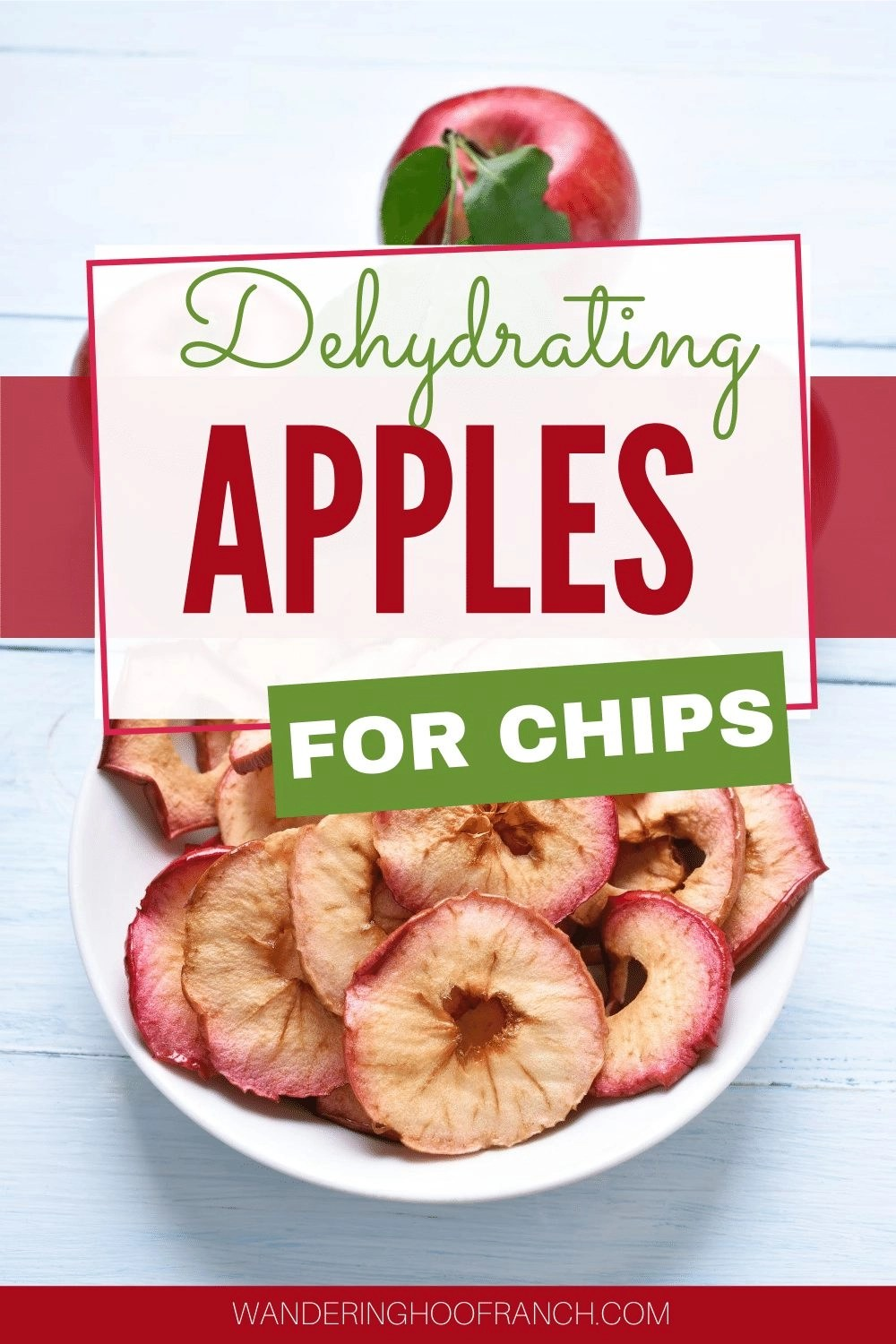 dehydrated apples on a plate