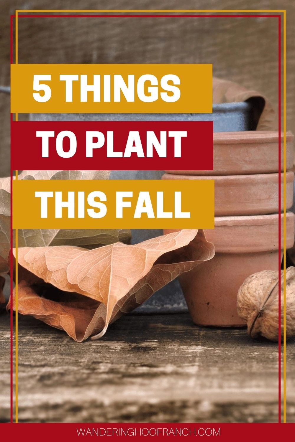 plant this fall pin, leaves watering can and planter pots