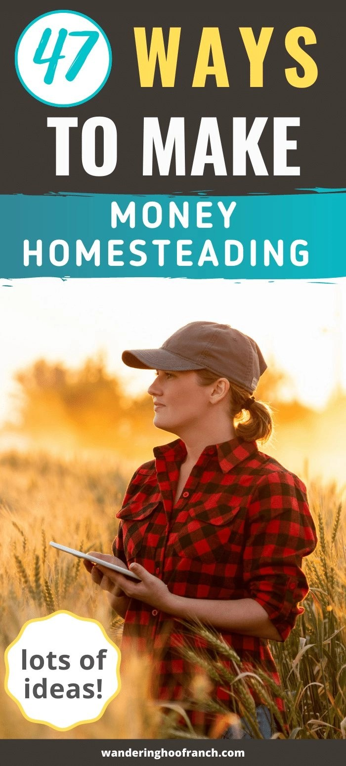 47 ways to make money homesteading pin image girl standing in a field with clip board