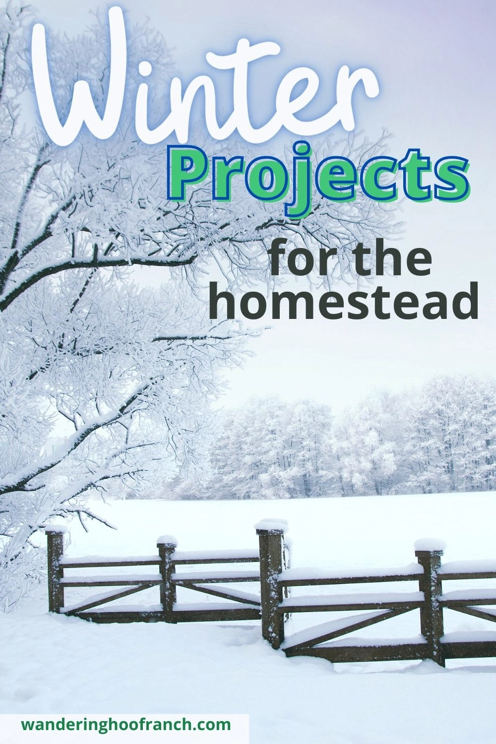 winter projects for the homestead. Snowy field with fence and tree