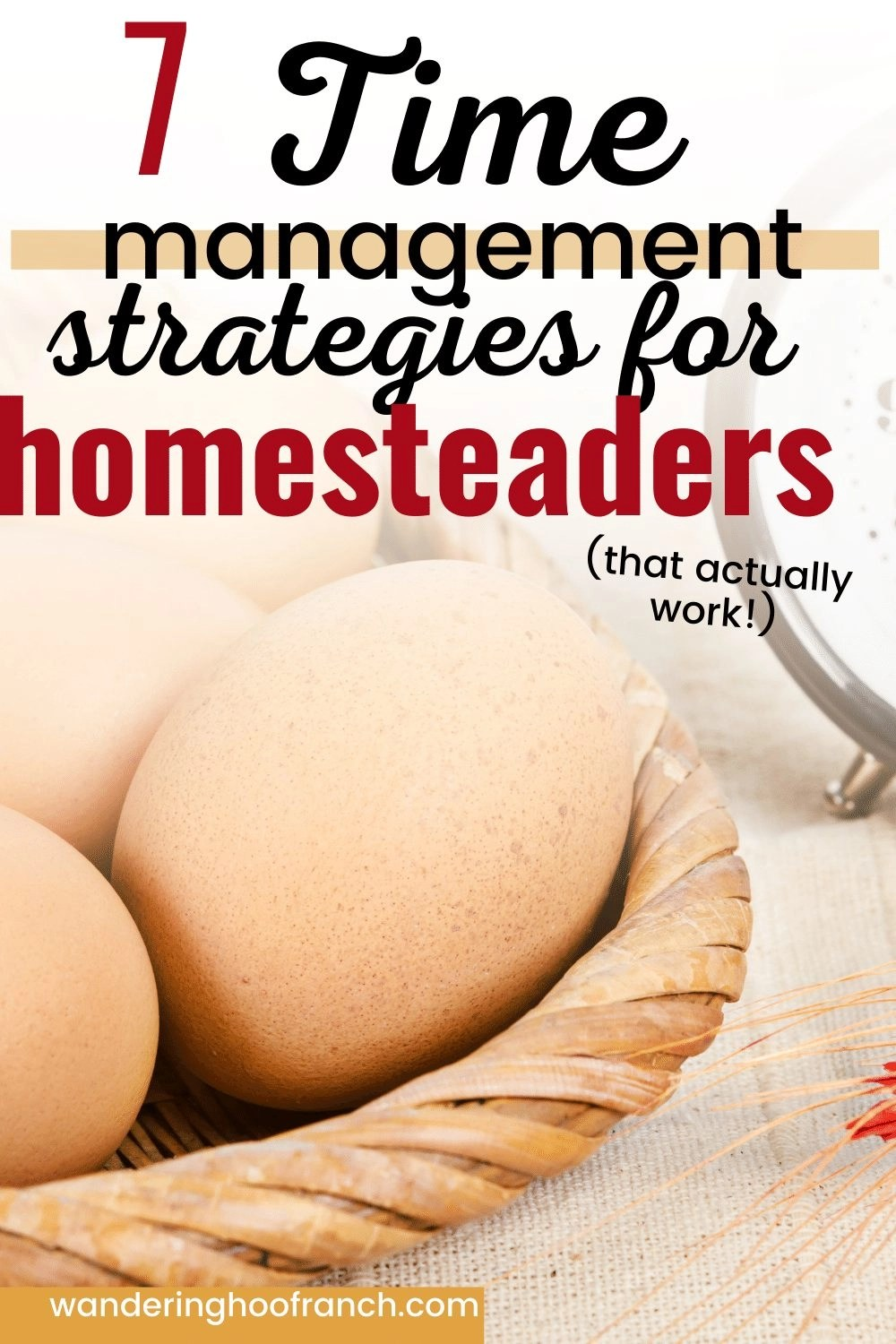 time management strategies for homesteaders Pinterest image basket of eggs and a clock in the background