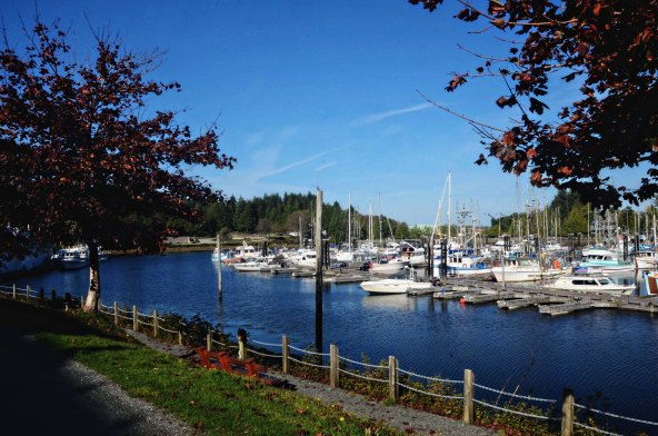 a port in Ucluelet