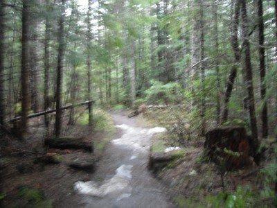 ape cave trail