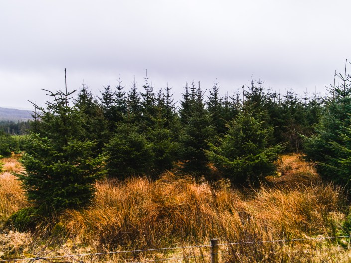 donegal county landscape