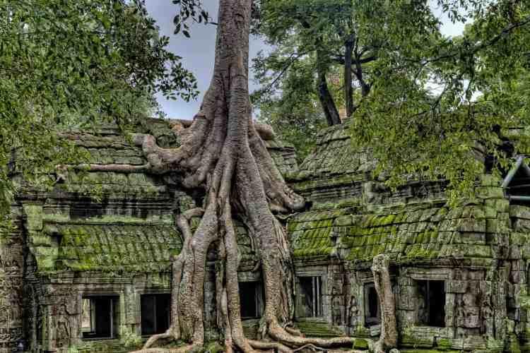 Wild camping in Cambodia