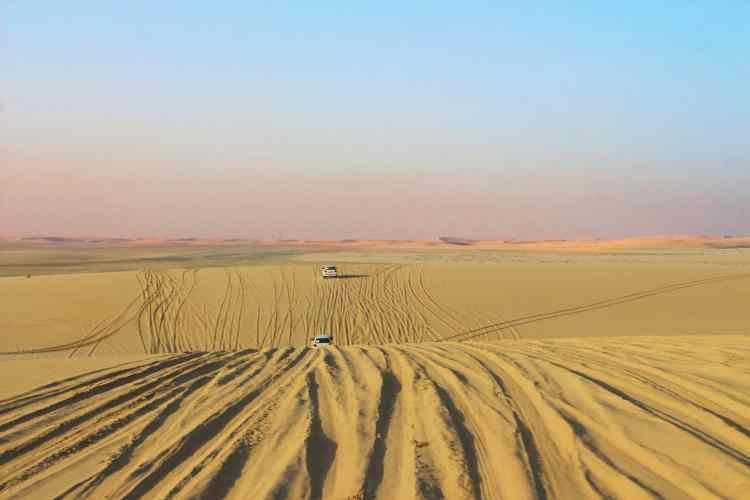 Wild camping Qatar