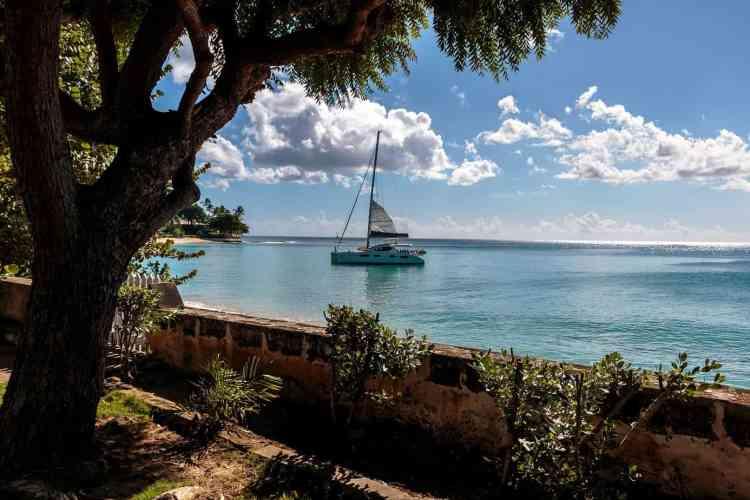 Aruba or Barbados
