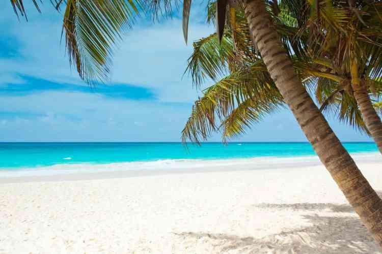 Barbados or Grenada