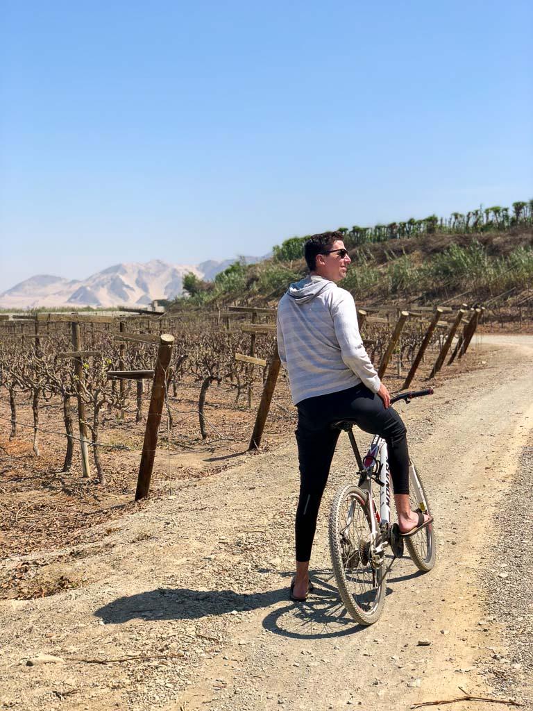 Biking through vineyards at Hotel Las Vinas Queirolos