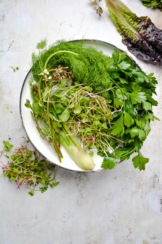 Baby fennel, salad greens, parsley, and microgreens