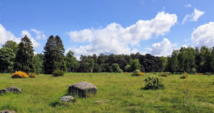 field near Norra Asum Sweden with some distant trees and large stones