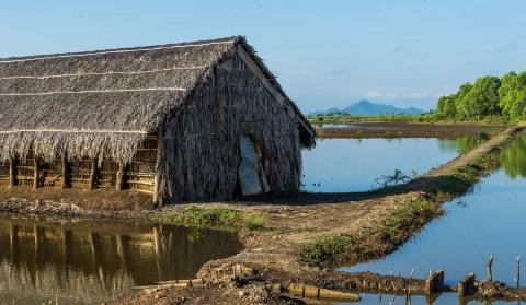 Salt field cambodia