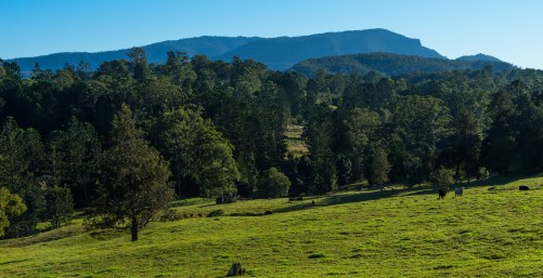 New South Wales hills