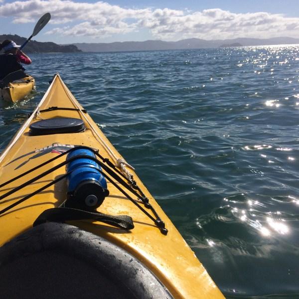 Sea Kayaking Wellington, New Zealand, North Island
