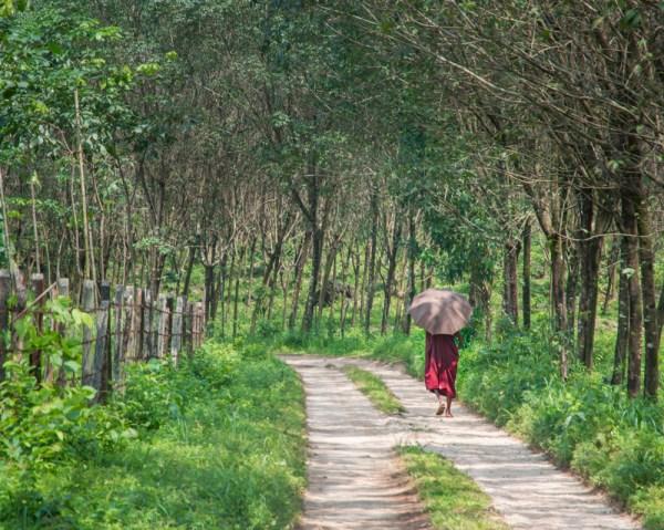 Monk walking along the road in Kinpun, Myanmar by Wandering Wheatleys