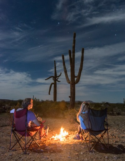 sonoran-desert-campfire-saguaro-cactus