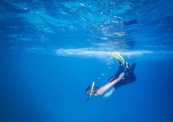 Snorkeling in the Red Sea, Hurghada, Egypt by Wandering Wheatleys