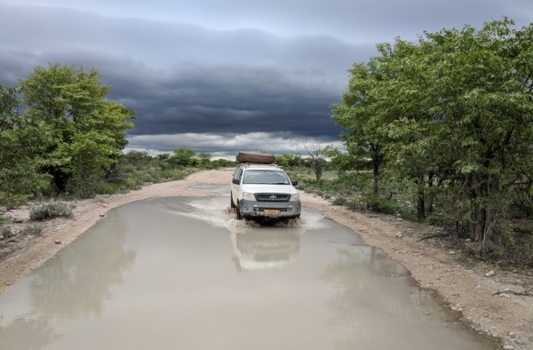 Driving in the rainy season, Etosha National Park, Namibia by Wandering Wheatleys