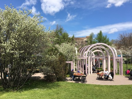 Rochester in the Spring at the Lilac Festival