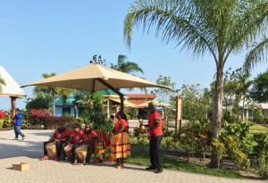 Belize Harvest Caye Band