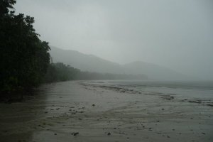 Cape Tribulation Travel Fail