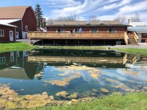 Cayuga Lake - Swedish Hill Pond