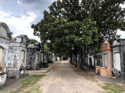 New Orleans - Lafayette Cemetery Magnolia Trees