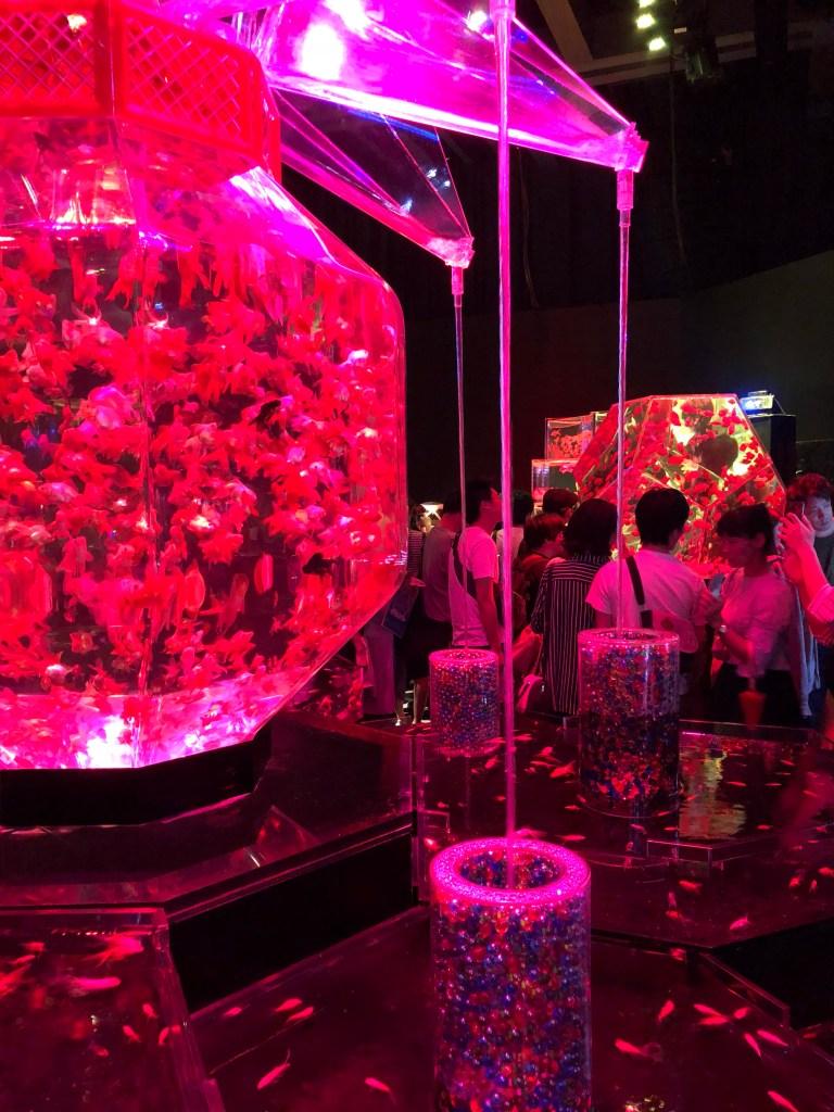 Japan - Tokyo Art Aquarium Exhibit