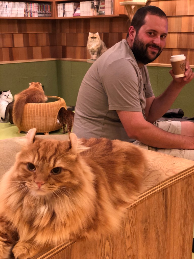 Japan - Akihabara Cat Cafe with Josh