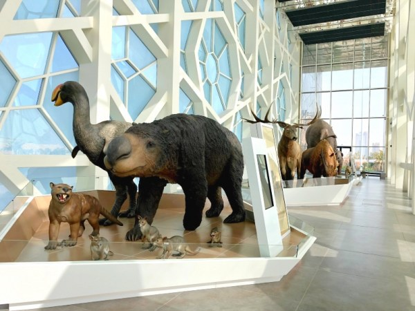 Kuwait Cultural Centre Animals
