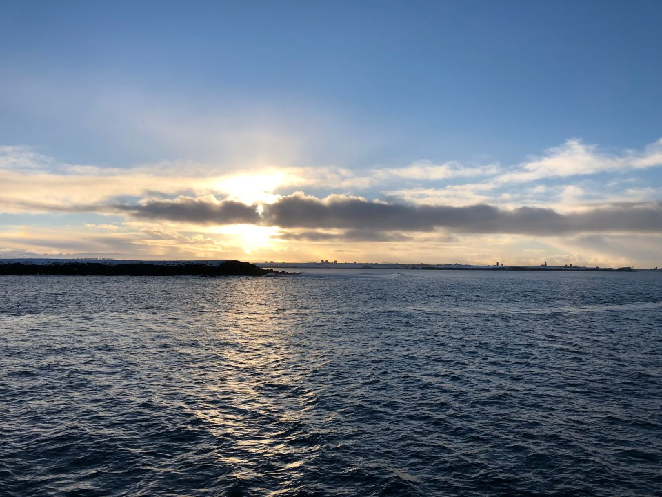 Iceland Whale Watching Sunset