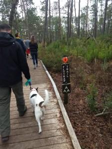Sasha Hiking