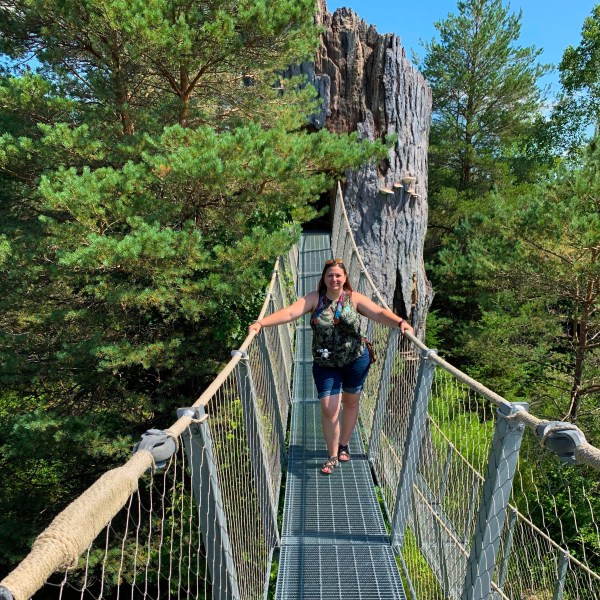 The Wild Center Rope Bridge