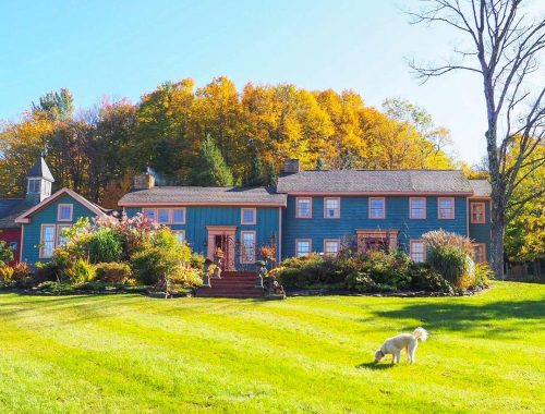 Blueberry Brooke - bed & breakfast in New York