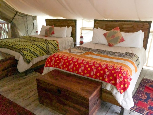 Glamping in Ithaca - Inside Tent