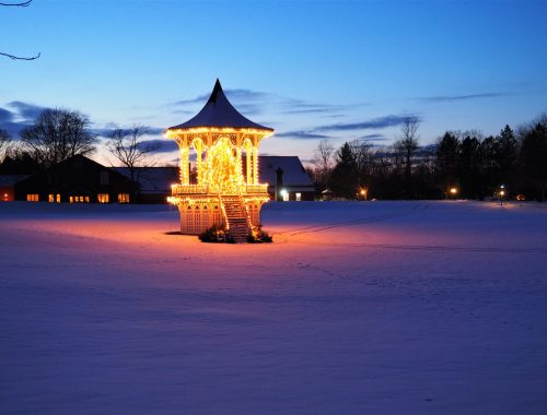 Genesee Country Village Christmas Tree in Rochester
