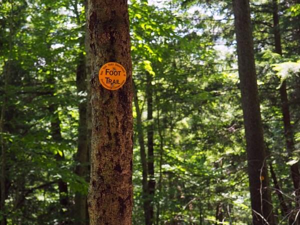 Adirondack Foot Trail