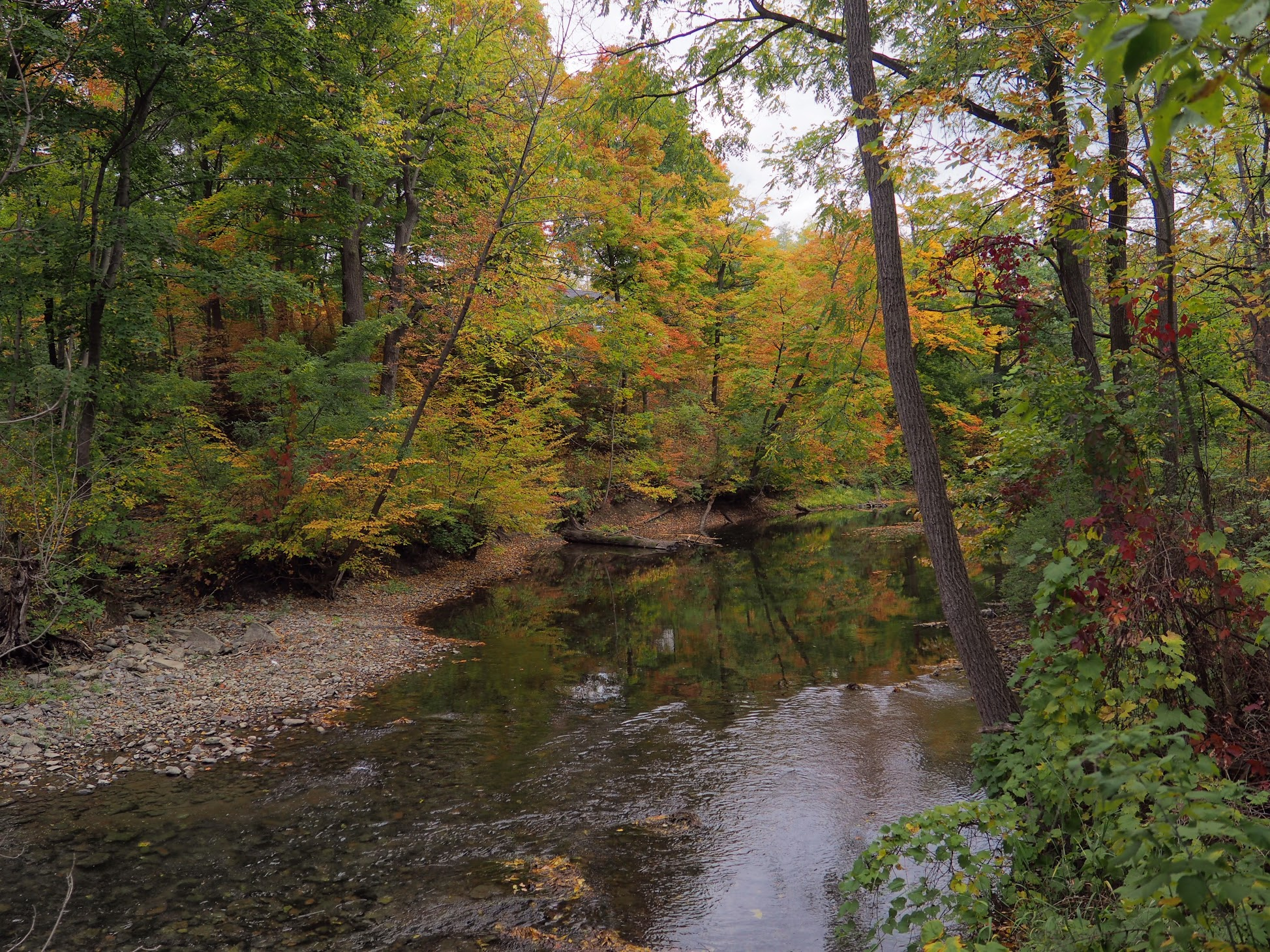 Keuka Lake Outlet Trail in Autumn