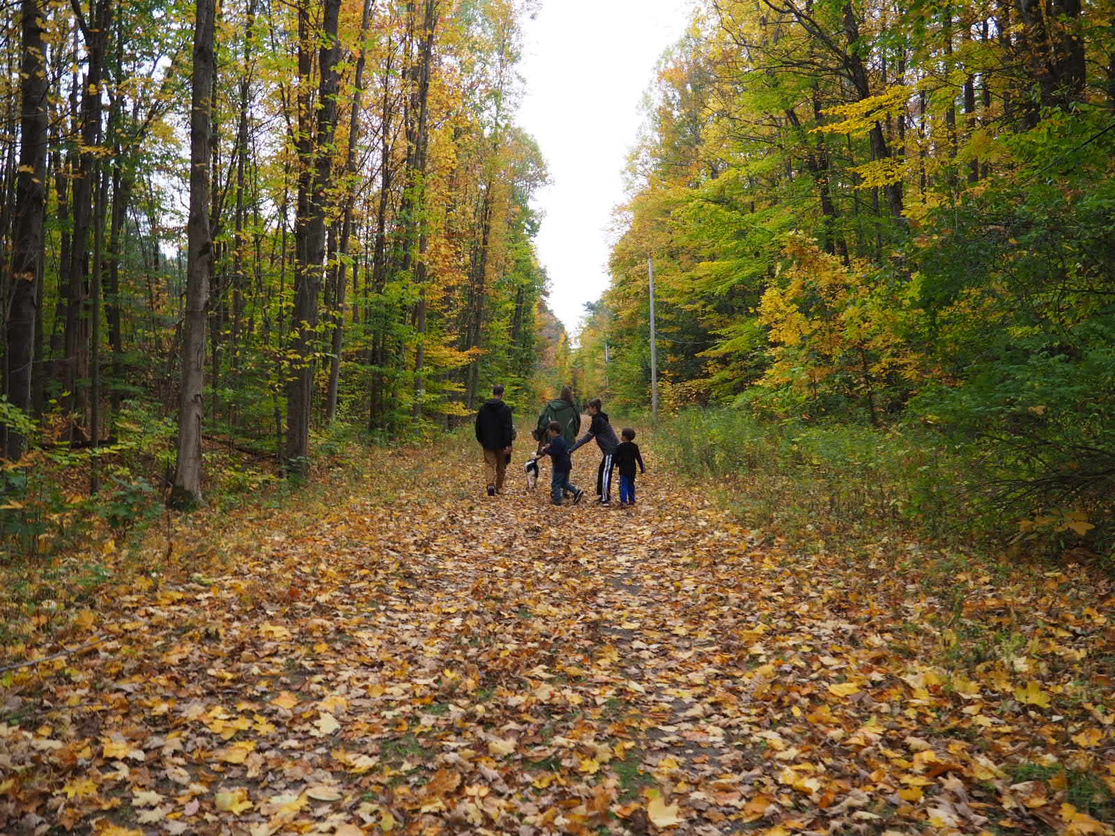 Great Bear Recreational Trail