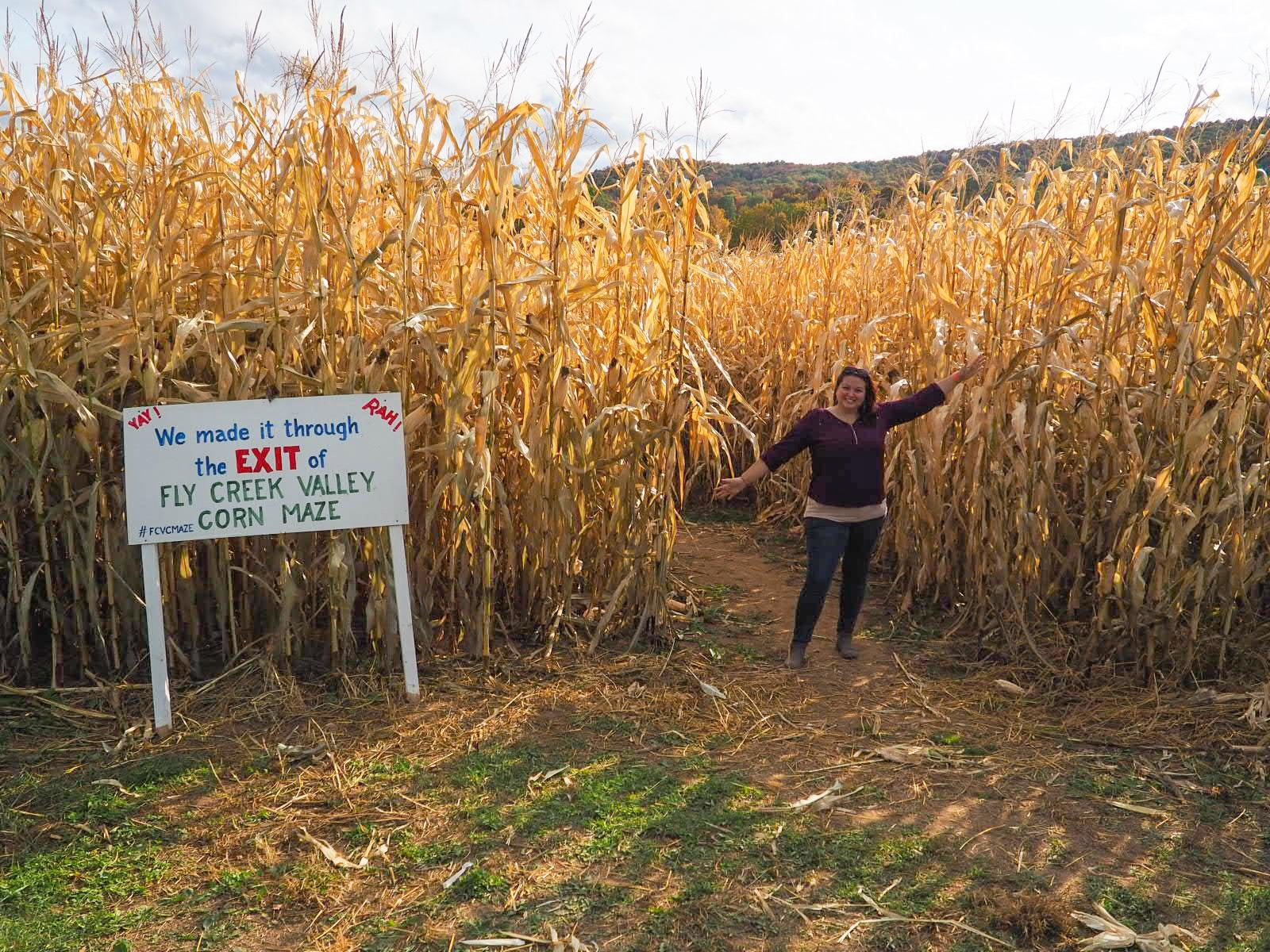 Fly Creek Valley Corn Maze Exit